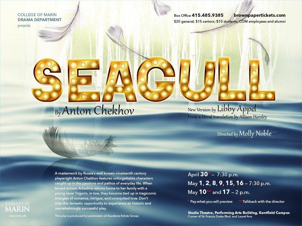 Seagull-eblast